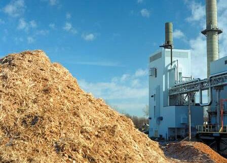 四川生物质燃料机公司:生物质能源产业企业创新与国家支持缺一不可