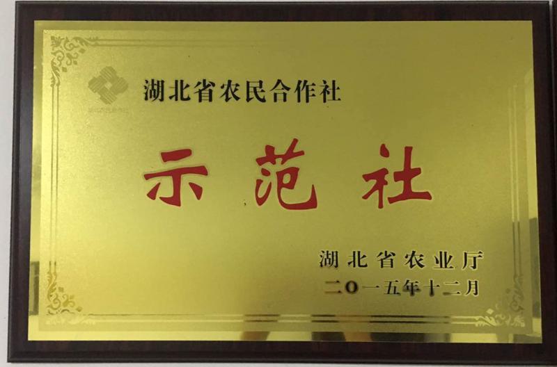 湖北省农民合作社示范社