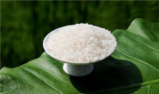 田里的水稻在收割前后的一些注意事项你知道吗?