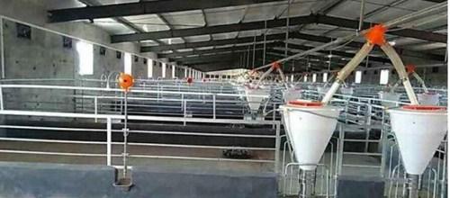 四川养殖设备的发展前景您知道吗?