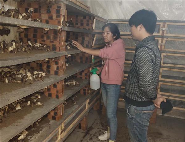 河南白玉蜗牛养殖加盟客户