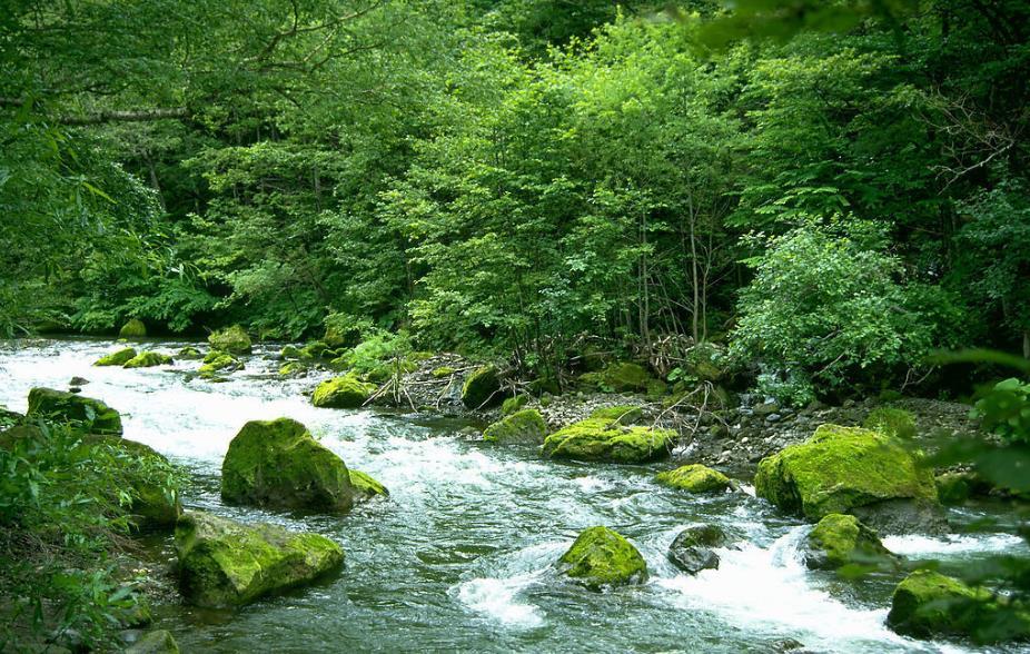 奋力开创生态环境保护事业新局面