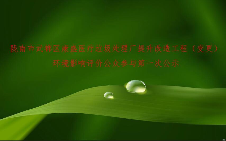 隴南市武都區康盛醫療垃圾處理廠提升改造工程(變更)  環境影響評價公眾參與第 一次公示