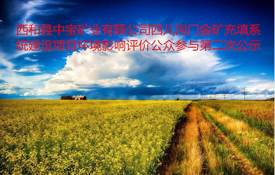 西和县中宝矿业有限公司四儿沟门金矿充填系统建设项目  环境影响评价公众参与第二次公示