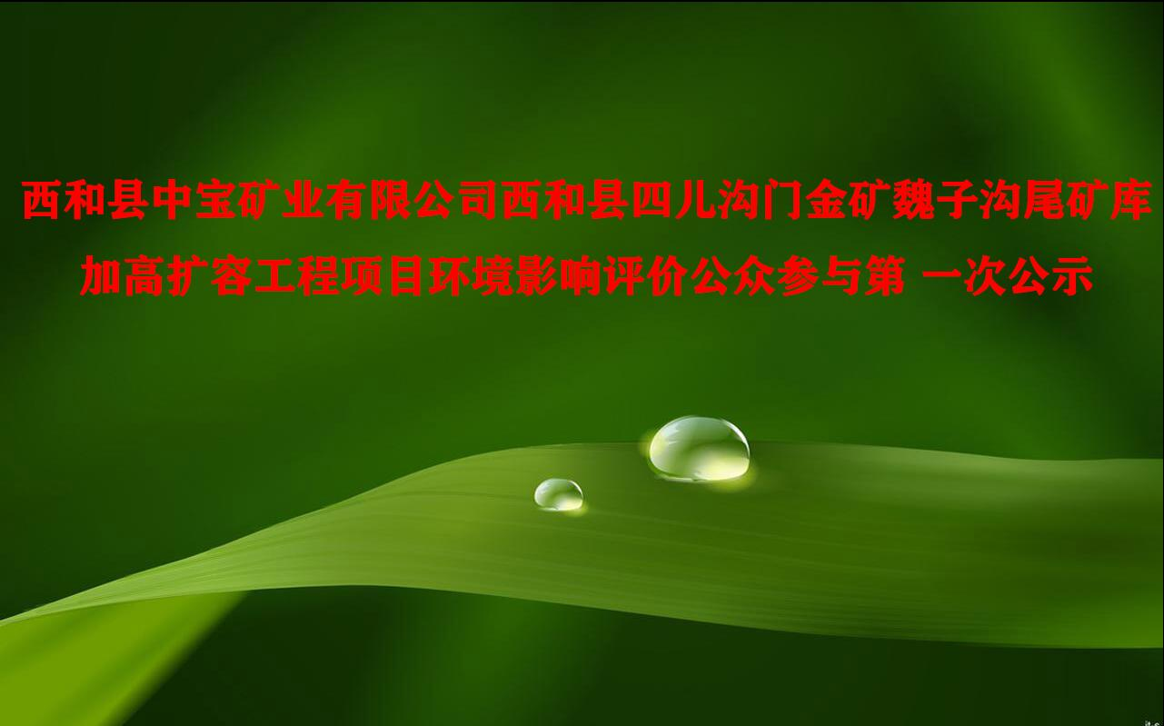 西和县中宝矿业有限公司西和县四儿沟门金矿魏子沟尾矿库加高扩容工程项目环境影响评价公众参与第 一次公示