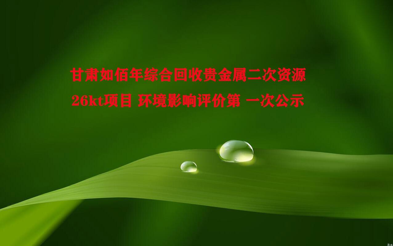 甘肃如佰年综合回收贵金属二次资源26kt项目 环境影响评价第 一次公示
