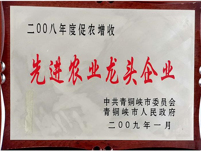**农业龙头企业-青铜峡市2009年度