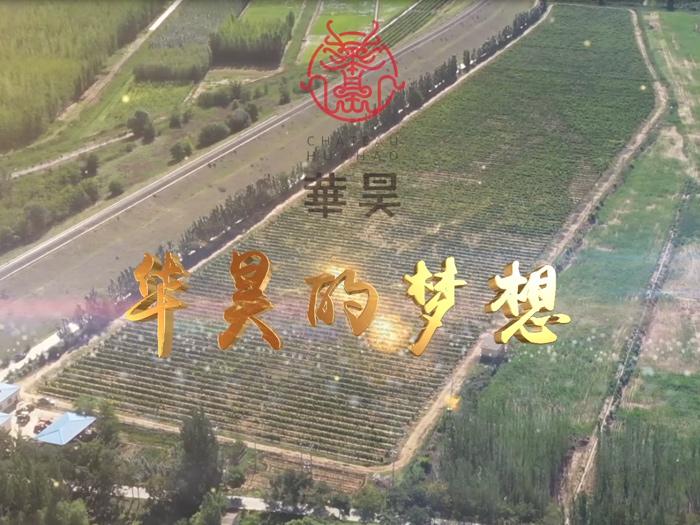 华昊酒庄宣传片