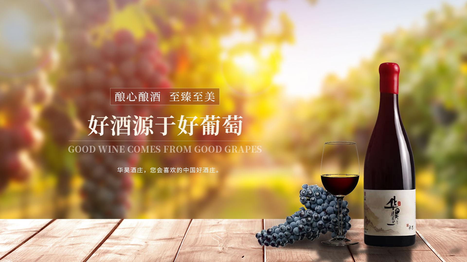 宁夏柳木高红酒
