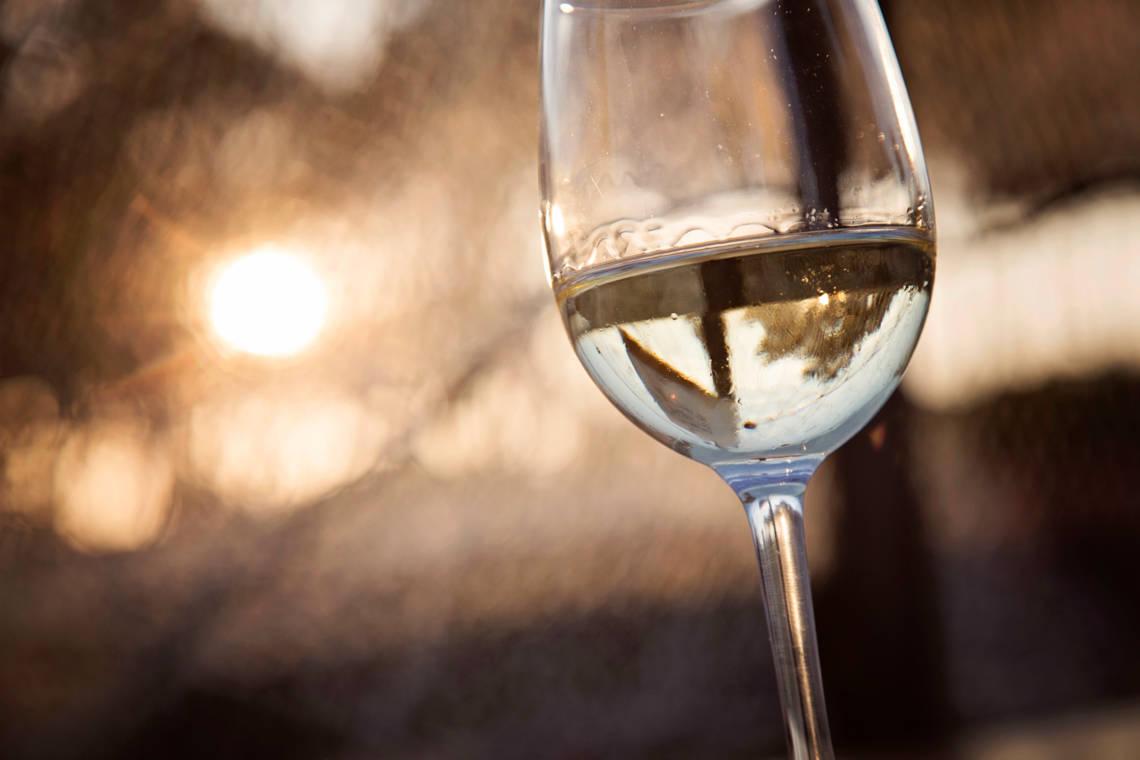 马瑟兰红酒带你一文速览葡萄酒的三类香气