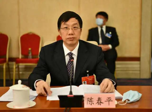 陈春平代表:将宁夏葡萄酒产业纳入中央财政扶持范围