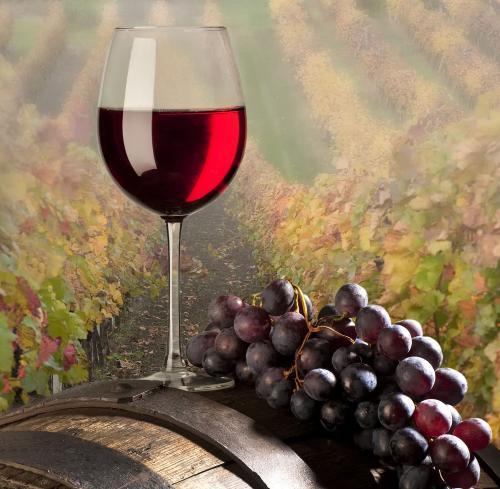食葡揭秘 | 酶在宁夏葡萄酒生产中的应用