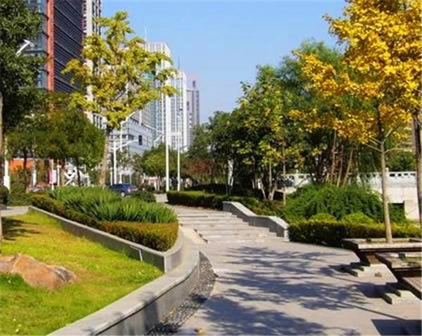 寧夏綠化工程