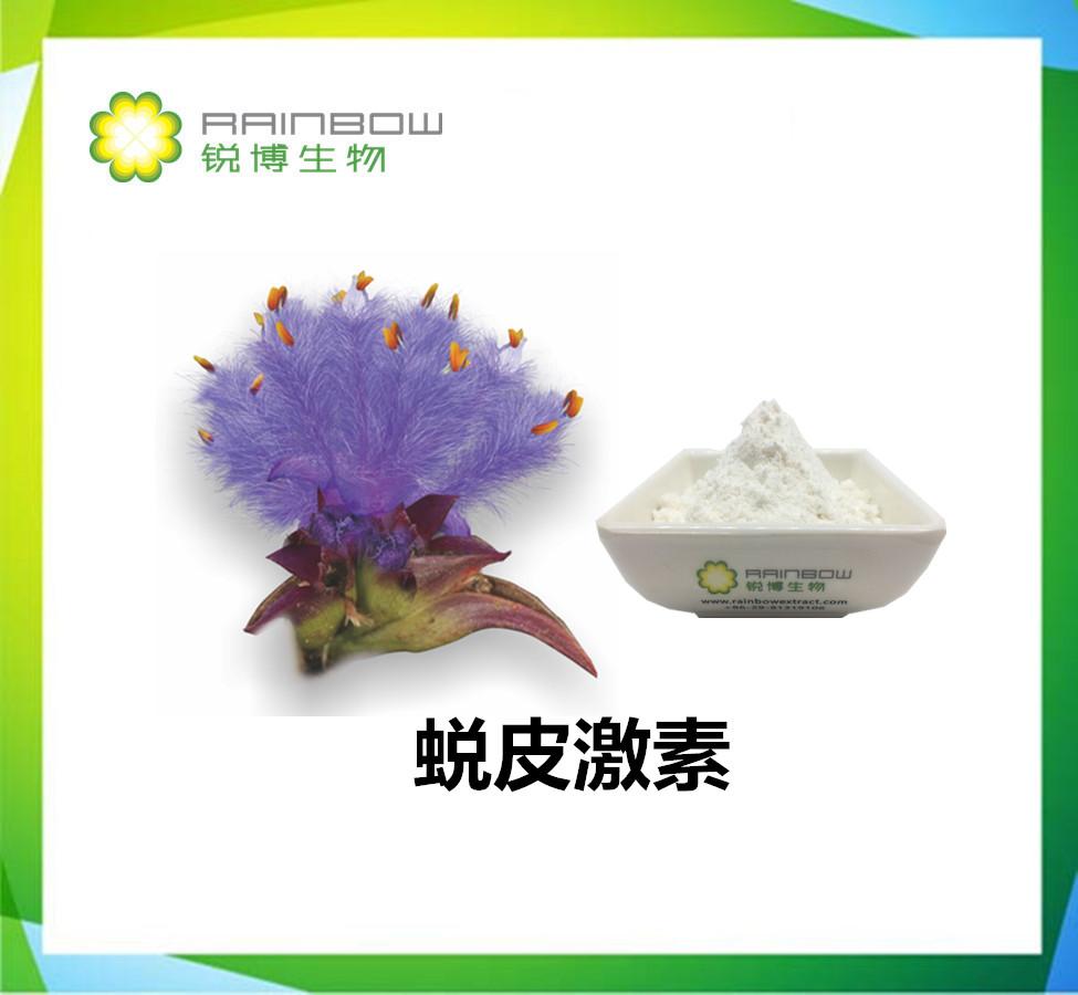 蜕皮激素/ 露水草提取物