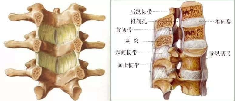方城腰椎病治疗