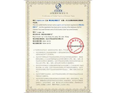 成都钢木门网站域名证书