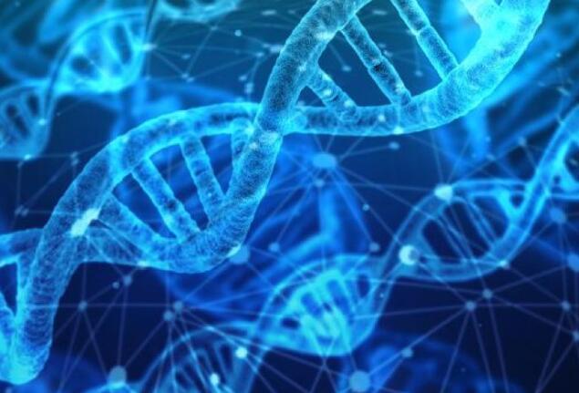 """免疫疗法激发机体抗癌的""""未来之星""""让抗癌领域更进一步"""