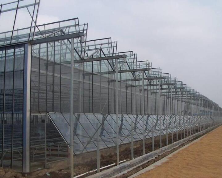 陕西玻璃大棚厂家
