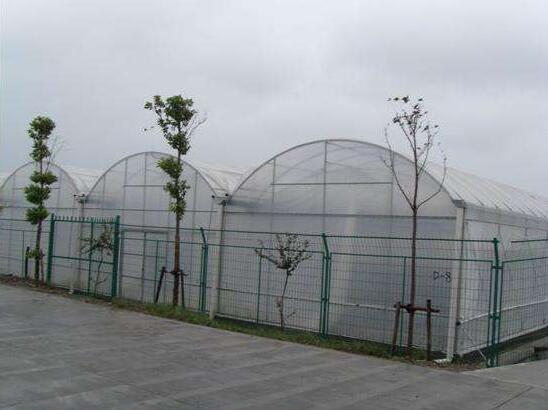 陕西温室大棚厂家