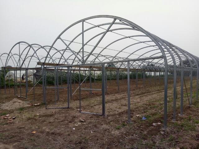 陕西温室大棚厂家带来大棚建设需要注意的三个问题