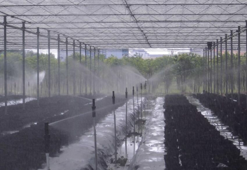喷淋喷灌系统厂家