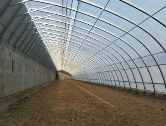 玻璃温室大棚是什么