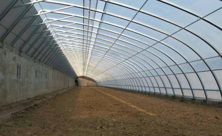 温室大棚要合理做通风工作,降低室内相对湿度
