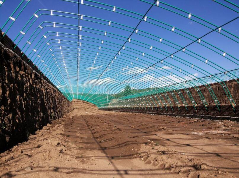 种植草莓需要多少资金,一亩大棚草莓利润多少