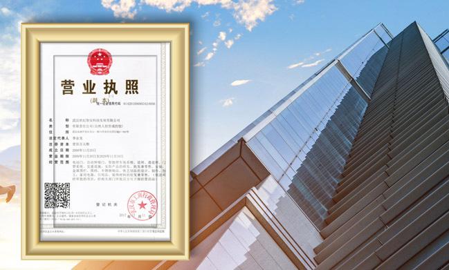 武汉世纪智安科技发展有限公司