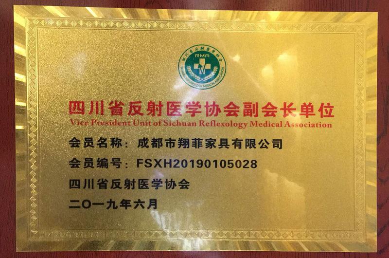 四川省反射医学协会副会长单位