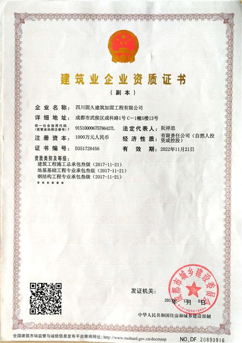 四川加固公司建筑业企业资质证书