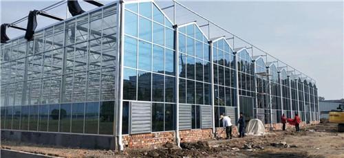 四川蔬菜温室大棚案列展示