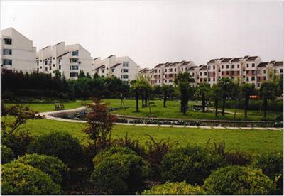 蓝田县聚庆苗圃-玉兰小区公园绿化