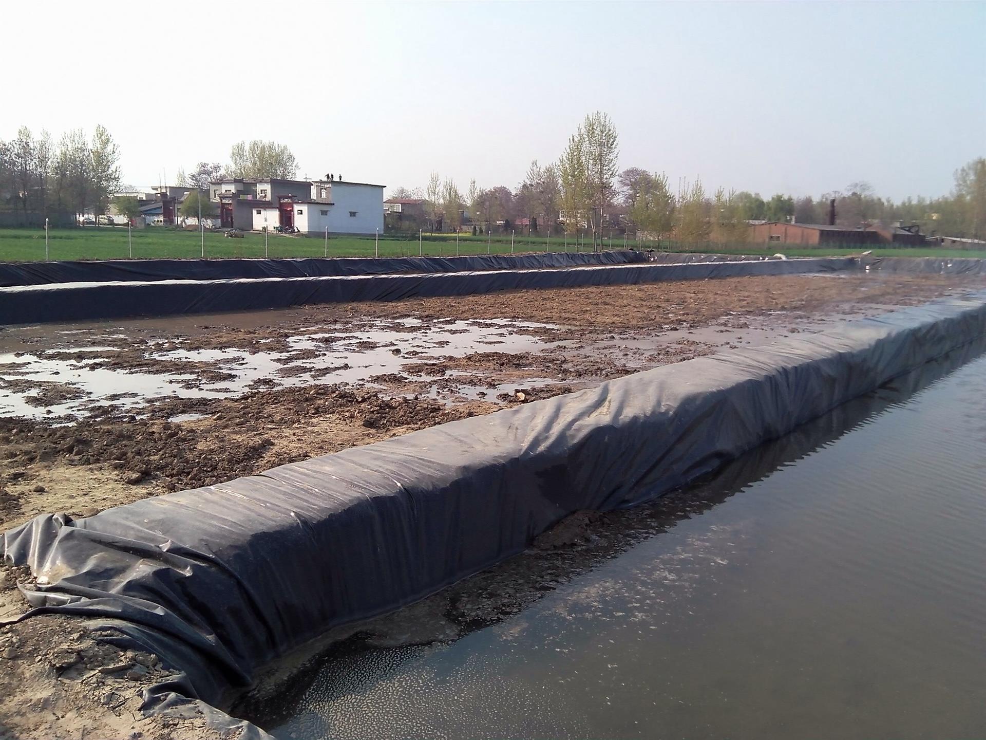 什么是农业地膜?塑料地膜的积极和消极作用有哪些?