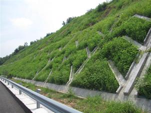 邊坡綠化為什么要用無紡布