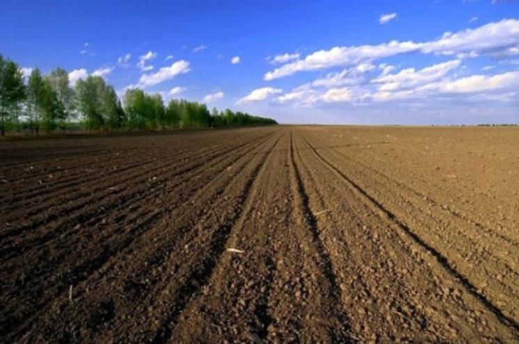 农村用地土壤修复