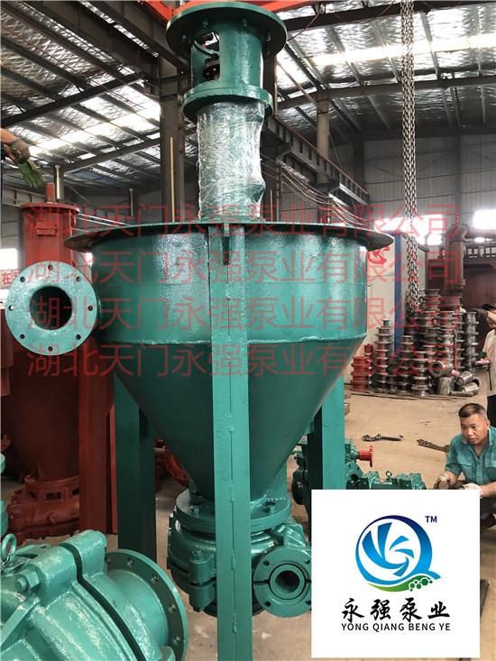 100YQPM-315/100PM-315泡沫泵