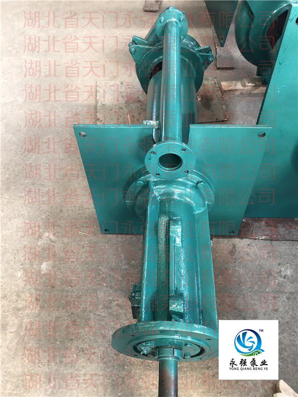 立式(液下)渣浆泵整机系列