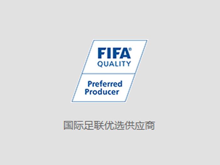国际足联优选
