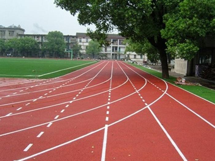 运动场塑胶跑道厂家