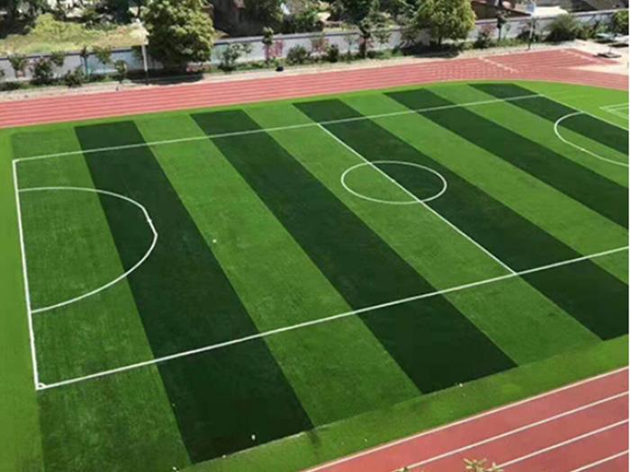 宁夏运动场人造草坪展示