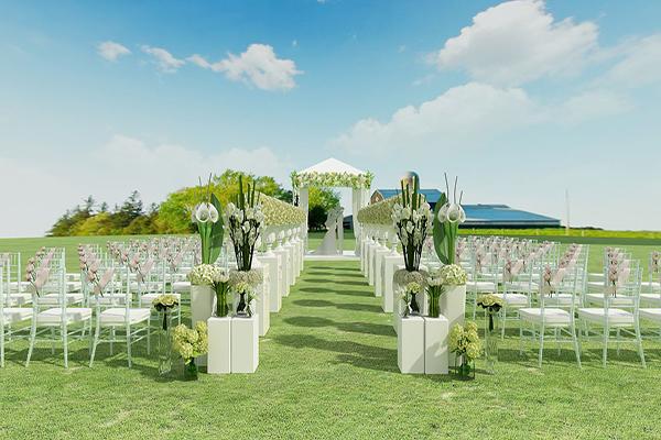 一起见证人造草坪上的浪漫草地婚礼