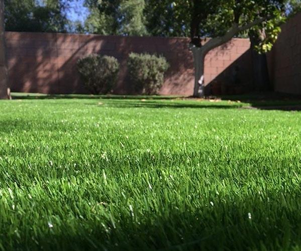 银川人造草坪
