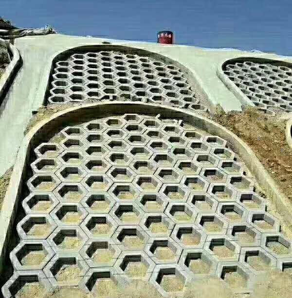 河南护坡砖