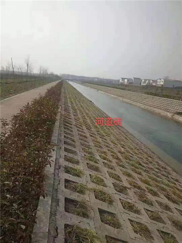 郑州河道砖厂家
