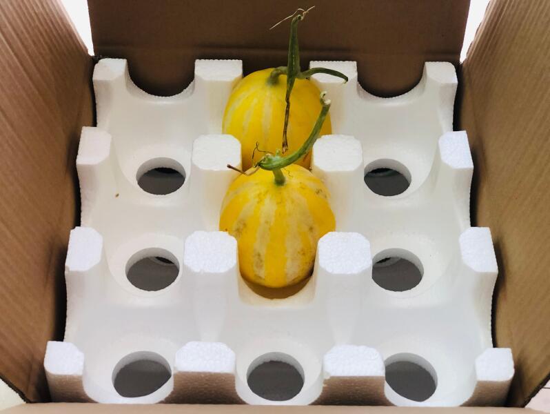 生活中常用的陕西泡沫包装盒都有哪些特性?