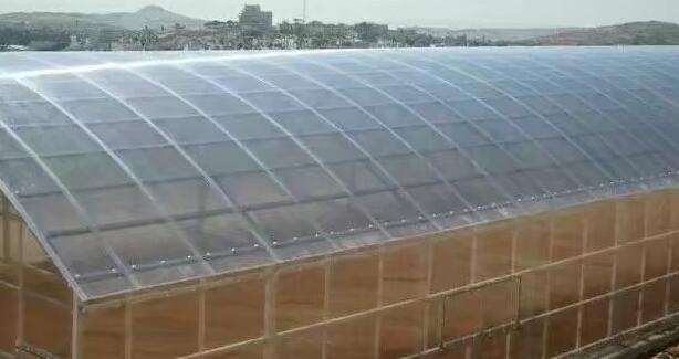 兰州阳光板