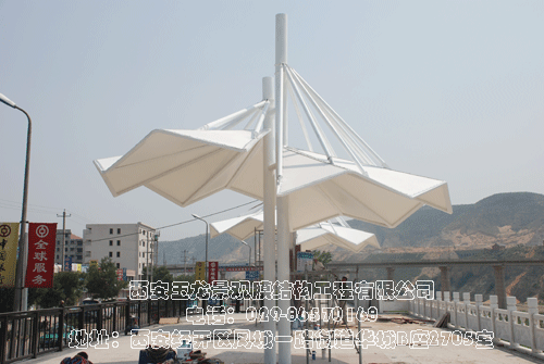 神木河滨景观膜结构工程