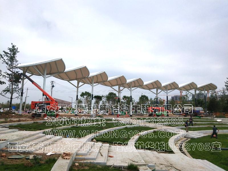 唐延路公园景观膜结构工程