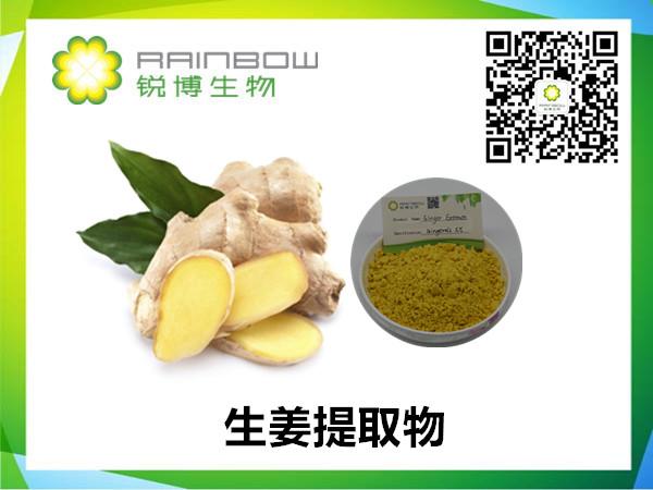 生姜提取物-姜辣素-水溶性生姜提取物